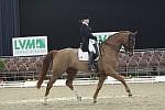 2004 PSG junior horse AH